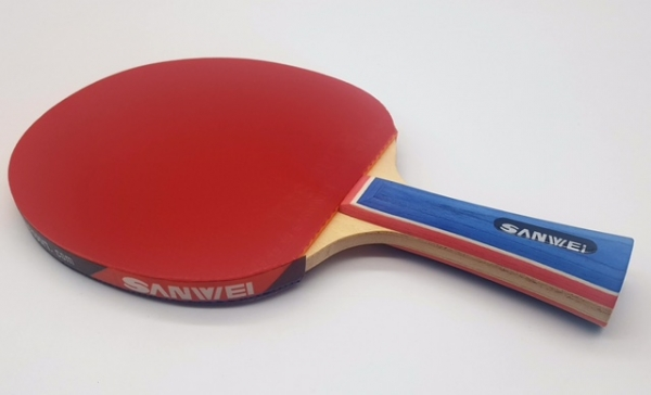 Sanwei T88-III Bat with case