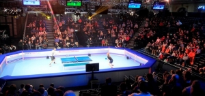 World Champs of Ping Pong, Ally Pally 24th - 25th Jan 2015