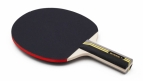 WCPP OFFICIAL PING PONG BAT